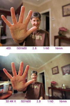 full frame dslr vs crop sensor - Google Search Full Frame Vs Crop, Photography Tricks, Photo Tips, Google Search, Photography Tips