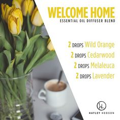 Looking for a new diffuser blend to try in your home? This is a great one - it's so warm and inviting! Wild Orange and Melaleuca essential oils contain powerful cleansing and purifying properties, and protect against seasonal and environmental threats while uplifting the mind and body. Cedarwood naturally repels insects and also promotes relaxation and evokes feelings of wellness and vitality, while soothing the mind and body. Lavender eases feelings of tension and reduces anxious feelings…