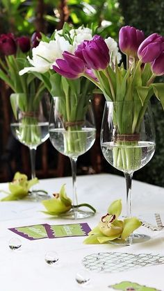Tulips in wine glasses