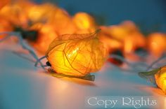 35 Yellow Roses Flower String Lights Party Patio by thailights, $13.59