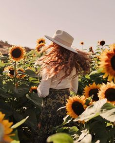 Photoshoot in the Sunflower Fields with Danielle Perry shot by Arielle Levy in San Diego Sunflower Feild, Sunflower Field Pictures, Sunflower Pics, Vsco Photography, Girl Photography Poses, Sunflower Field Photography, Tumblr Photoshoot, Danielle Victoria, Cute Poses For Pictures