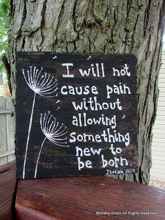 Bible Verse Quote Barnwood Dandelion Sign I by WeLovePaintedArt