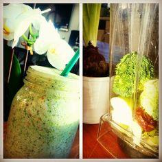 http://www.die-personaltrainer.in/oriental-health-smoothie-wie-aus-dem-maerchen/  Yummi so wonderful!  Apple, Vanilla, Fig, Brokkoli, Water, Almonds Loooooveeee
