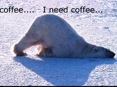 """Pump up your morning with a """"need coffee"""" meme! Here's a list of funny memes for you and all the coffee lovers out there! Coffee Quotes, Coffee Humor, Funny Coffee, Tea Quotes, Photo Images, Picture Photo, Bing Images, I Love Coffee, Coffee Coffee"""