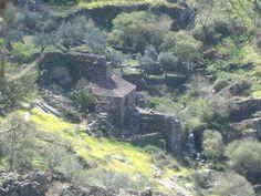 """Molino de Catalina. Foto tomada desde el alto de """"La Garganta"""""""