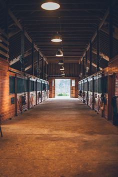 To me, this is perfect. This is a barn I want to hang out in.