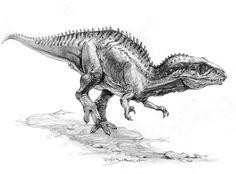 carcharodontosaurus by Eivind Bovor Dinosaur Sketch, Dinosaur Drawing, Dinosaur Art, Chuck Norris, Prehistoric Creatures, Prehistoric Age, Dinosaur Illustration, Illustration Botanique, Anthropologie