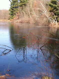 Connecticut winter