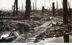 Image result for Passchendaele New Zealand WW1 Any Images, First World, World War, New Zealand, Outdoor, Outdoors, Outdoor Games, The Great Outdoors