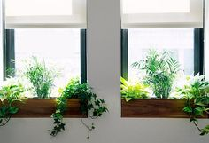 Stylish Space Savers: 7 Ideas to Make Your Window Sills More Useful & Beautiful.  John Kettle - Wellington Real Estate Agent, Apartment Specialist -http://www.tommys.co.nz/head-office/agent/john-kettle
