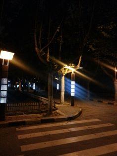 Night Walking 夜行