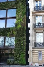 vertical gardens paris Design and construction of a vertical garden In natur… Home Irrigation Systems, Automatic Irrigation System, Vertical Planting, Vertical Gardens, All Plants, Water Plants, Indoor Garden, Indoor Plants, Paris Garden