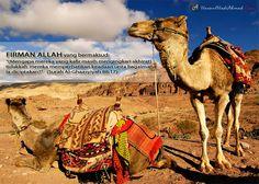 perubatan susu unta dari sudut islam