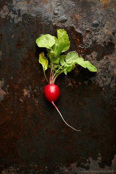 Radish | Photographer: Ivana Jurcic www.ivanajurcic.com