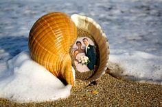 Real Shell Picture Frame Your Picture inside a by pictureinashell