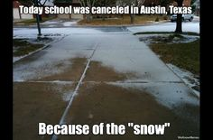 School Canceled In Austin Texas Because Of The 'Snow' - Meme Collection Stupid Memes, Stupid Funny, Funny Cute, Really Funny, Funny Stuff, Funny Relatable Memes, Funny Texts, Funny Jokes, Hilarious