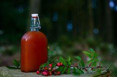 Októberben, novemberben, sőt még decemberben is gyűjthető a vadrózsa termése, a csipkebogyó, amely könnyedén gyűjthető és finom, lekvárszerű, szörphöz hasonló szirup készíthető belőle.... Izu, Hot Sauce Bottles, November, Drinks, Food, Yogurt, Meal, Eten, Drink