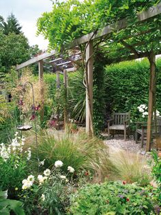 Informal Pergola: Plantings positioned close to the pergola give it an informal feel. From HGTV.com's Garden Galleries