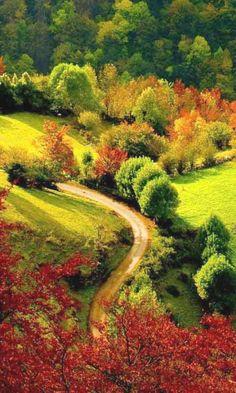 passage among Autumn foliage