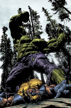 Hulk Vs Wolverine...wow. If anyone knows the artist's name, please leave a comment!