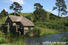 the hobbiton movie set Hobbit Land, The Hobbit, Hobbit Door, I Love The Lord, Humble Abode, Tour Guide, New Zealand, My House, Behind The Scenes