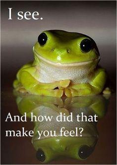LOL frog therapist More Funny, Fun Humor Photos。◕‿◕。 https://www.pinterest.com/busyqueen4u/funny-fun-humor-photos/