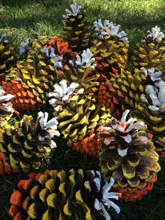 Make this simple Candycorn Pinecone!
