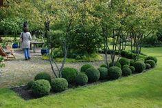 Bildergalerien - Sonntagsgrün - Gartencafé - Gartenreisen - Gartenkultur - Gartenbücher