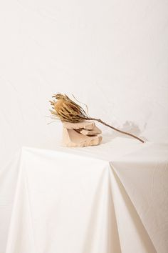 Loup Collection on Behance Still Life Photography, Artistic Photography, Fashion Photography, Product Photography, Photography Ideas, Skirt Mini, Photo Images, Prop Styling, White Aesthetic