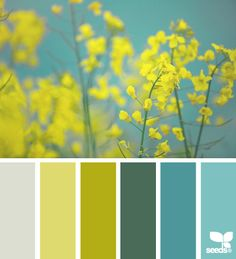 KITCHEN COLOURS spring flora - design seeds bedroom - walls a paler blue, cream/white bedding, very small hits of the spring green in pillows or a throw. Yellow Color Combinations, Colour Schemes, Design Seeds, Wall Colors, House Colors, Color Walls, Flora Design, Design Color, Design Design