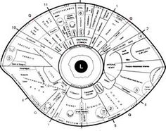 Free Iridology Eye Chart Downloads | Large Iridology Chart