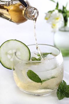 Cool Recipe: Liz's Elderflower Champagne Cocktail Stay Cool! Cool Recipe: Liz's Elderflower Champagne Cocktail Stay Cool! Cocktails Vodka, Beste Cocktails, Cocktail Drinks, Cocktail Recipes, Cucumber Cocktail, Summer Cocktails, Champaign Cocktails, Champagne Drinks, Drink Recipes