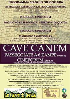 Cave Canem, si passeggia fino al cinema con Don't Worry be Dog :http://www.qualazampa.news/event/cave-canem-si-passeggia-fino-al-cinema-con-dont-worry-be-dog/
