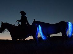 Tail Lights by Sami Gros — Kickstarter.  Tail Lights are a revolutionary LED lighting system for horses that uses color, and style, to keep horses and rider visible during any type of weather or lighting levels.