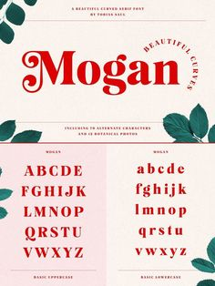 Mogan, a beautifully curved serif font designed by Tobias Saul. Mogan, a beautifully curved serif font designed by Tobias Saul. Just recently designed and published by Tobias Saul, Mogan is a serif font with nicely Graphic Design Fonts, Graphisches Design, Graphic Design Inspiration, Layout Design, Branding Design, Web Layout, Graphic Designers, Interior Design, Police Avec Serif