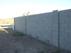cinderblock fencing...maybe another couple rows for added height?  Could make a great private courtyard.