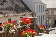 St Peter Port floral displays
