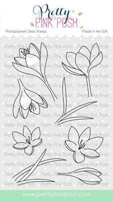 Flourishing Fuchsias Stamp Set Malvorlagen Blumen Krokus Blumen