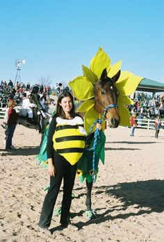 simple halloween costumes for horses Horse Halloween Ideas, Horse Halloween Costumes, Animal Costumes, Pet Costumes, Costumes For Horses, Halloween Fun, Majestic Horse, Beautiful Horses, Horse Fancy Dress Costume