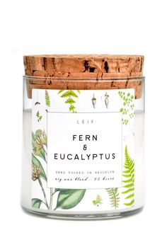 Leif Botanist Candle in Fern & Eucalyptus