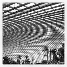 Structure of the Flower Dome.  (at Gardens By The Bay)