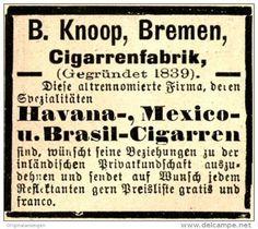 Original-Werbung/ Anzeige 1897 - CIGARREN KNOOP - BREMEN - ca. 45 x 35 mm