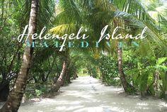 helengeli malediven reiseblog titel