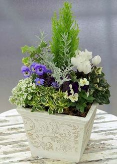 Container Flowers, Container Plants, Container Gardening, Flower Pot Crafts, Flower Pots, Green Flowers, Pretty Flowers, Floral Centerpieces, Flower Arrangements