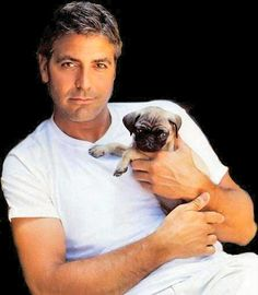 Who knew George Clooney had a pug? (Click through the link to see 13 other celebs with pugs! George Clooney and a pug! Two favorites. Cute Puppies, Cute Dogs, Bulldog Puppies, Christian Kane, Hommes Sexy, Raining Men, How To Pose, Pug Love, American Actors