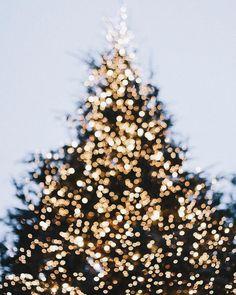 Cozy Christmas Wallpaper Winter Snow Ideas For 2019 Cozy Christmas, Christmas Photos, Christmas And New Year, Christmas Holidays, Christmas Bedroom, Christmas Poster, Christmas Drinks, Christmas Morning, Christmas Design