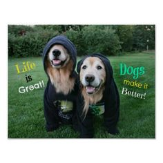 Golden Retriever Life is Great Poster by #AugieDoggyStore