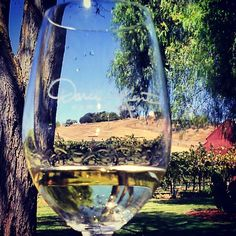 Beautiful sunny day in Livermore Wine Country