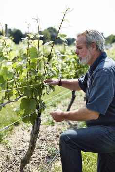 A Day in the Hectic, Happy Life of a Winemaker