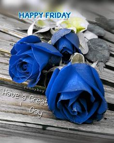 Hello Friday, Happy Friday, Have A Great Day, Good Day, Day For Night, Planting Flowers, Plants, Cards, Buen Dia